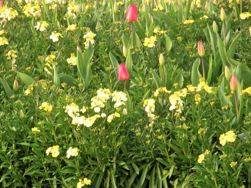 2010-04-10 at 18-41-28.jpg