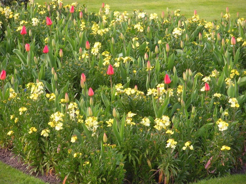 2010-04-10 at 18-43-11.jpg