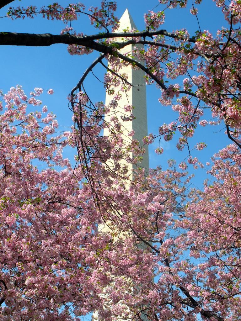 2010-04-04 at 13-28-56.jpg