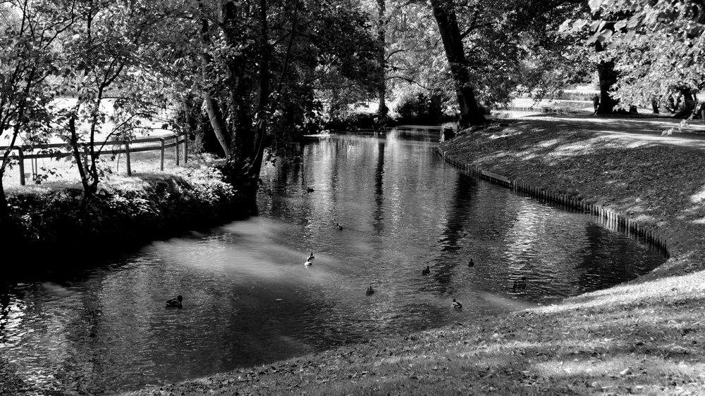 Oxford 76.jpg