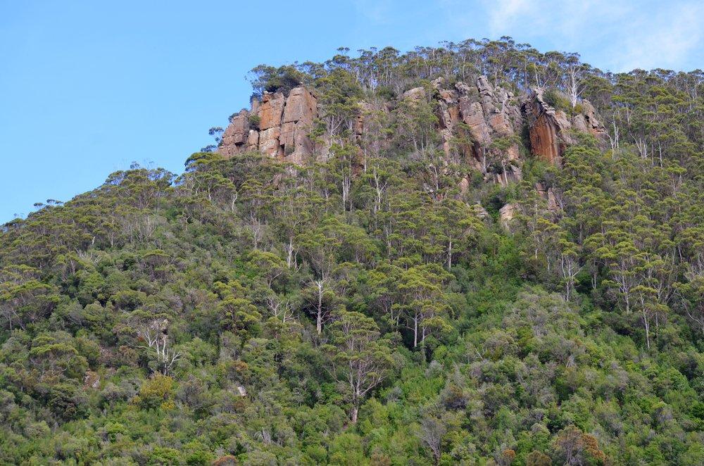 Tasmania 16.jpg
