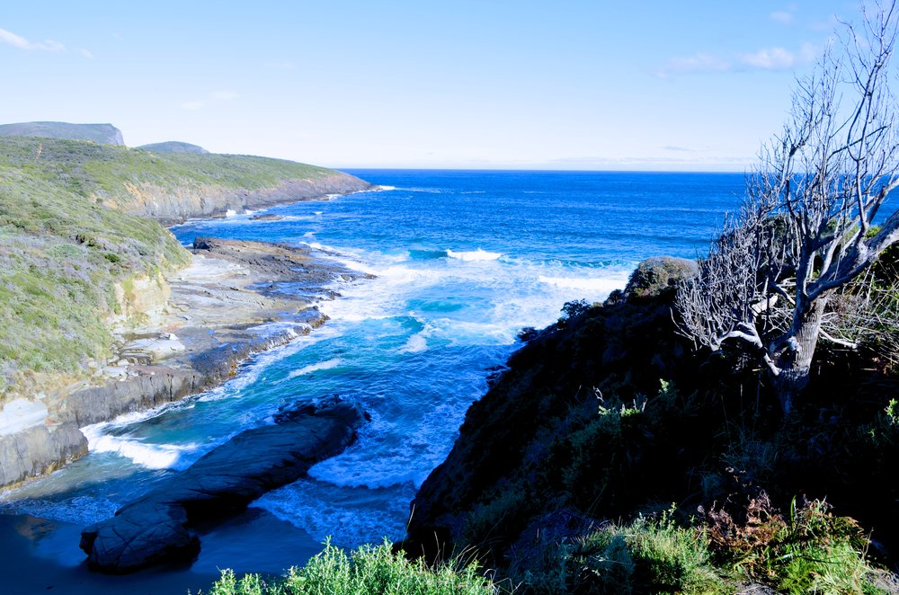Tasmania 33.jpg