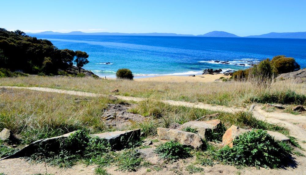 Tasmania 37.jpg