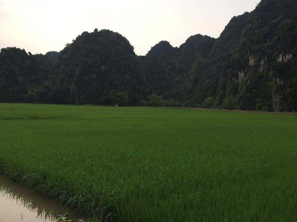 Ninh Binh Mountains