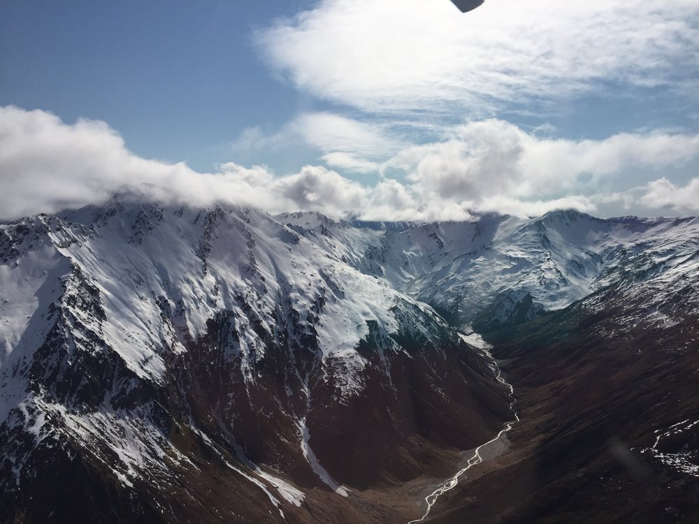 Heli Tour Over the Southern Alps
