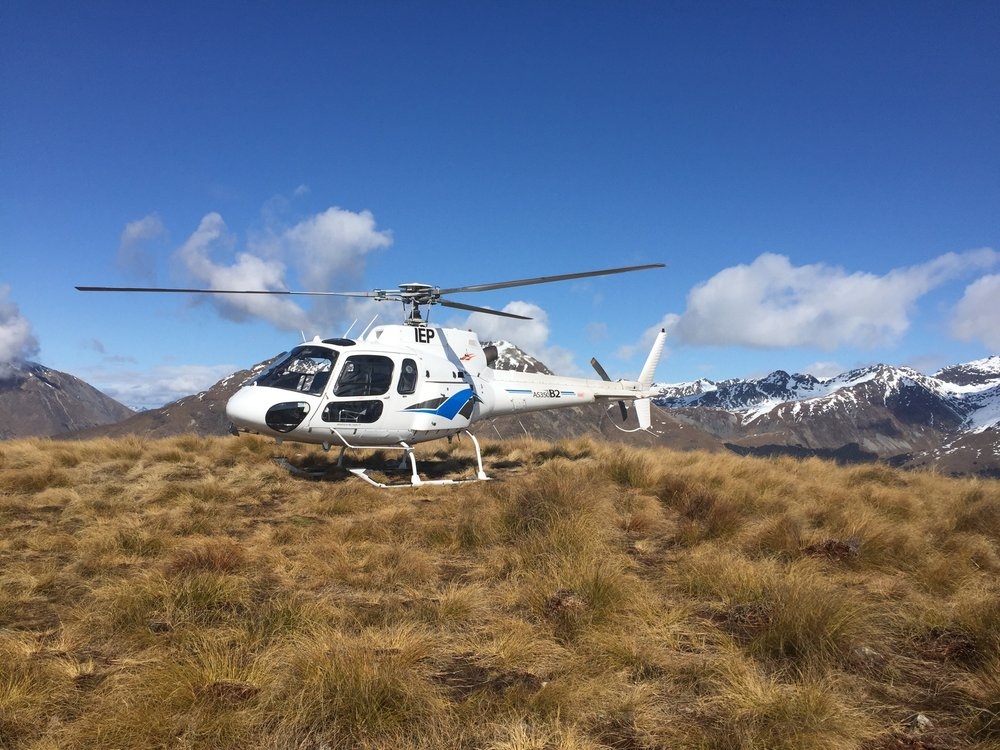 Our Helo