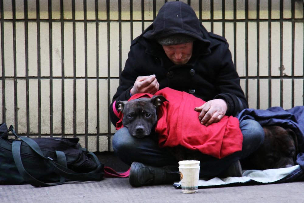 Homelessman_withdog.jpg
