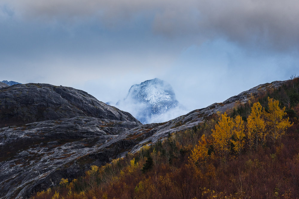 A view from Åselistraumen, Bodø.-DSC_0110-Bjørn Joachimsen.jpg