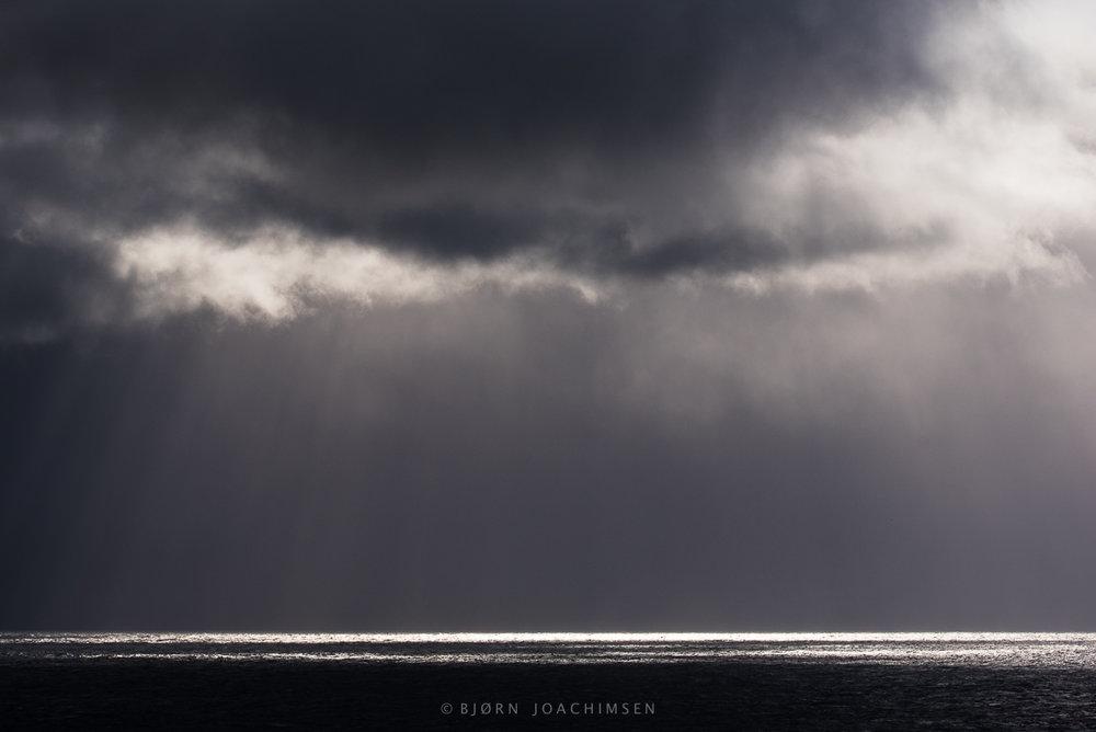 Hornøya©Bjørn Joachimsen-_DSC3565.jpg