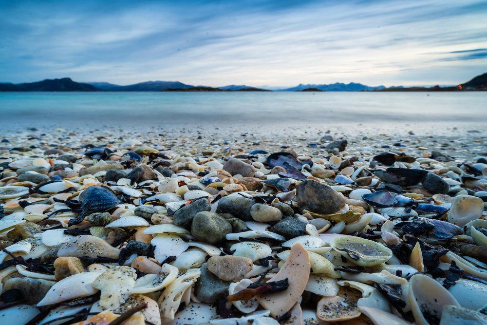 Sandøya-_DSC0318-©Bjørn Joachimsen.jpg