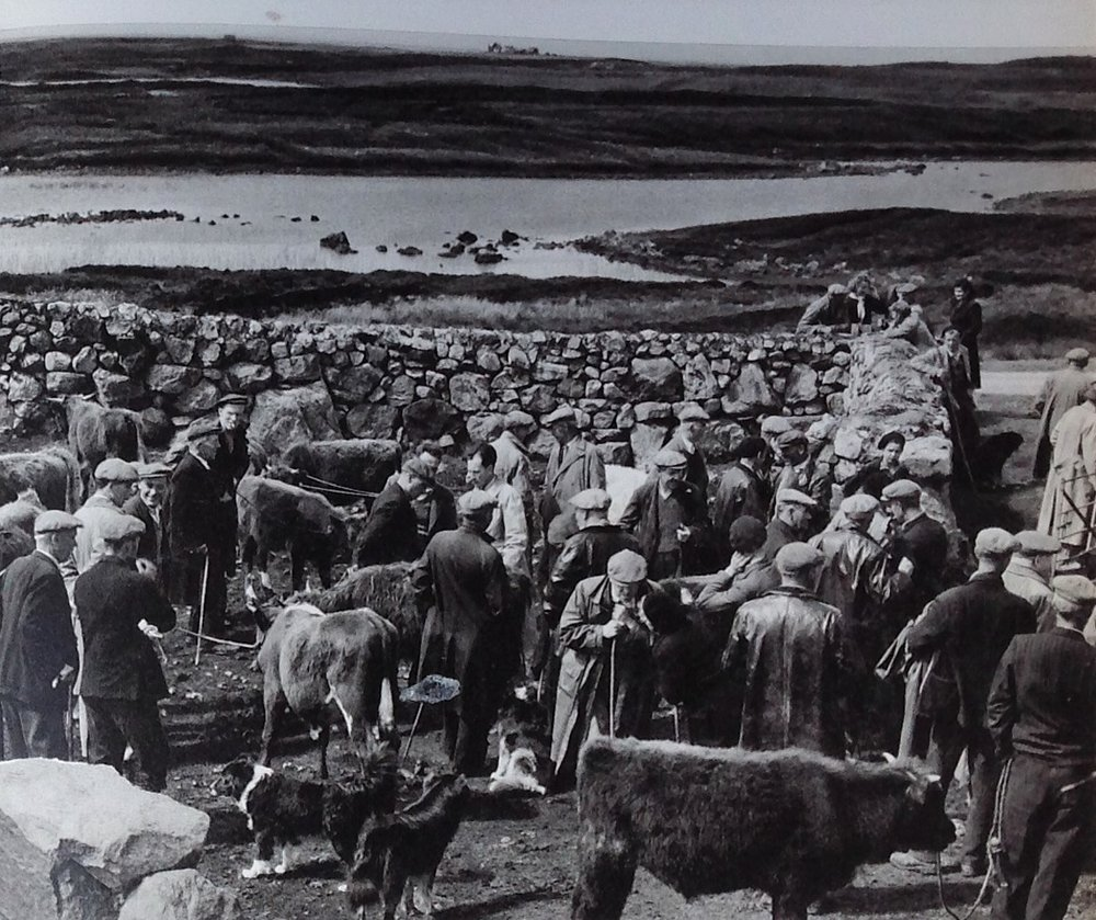 Cattle sale, Loch Ollay. Paul Strand, 1962