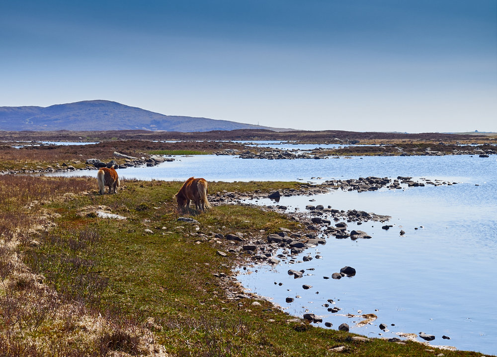 Loch Druidibeag: Mark Farrington 2016