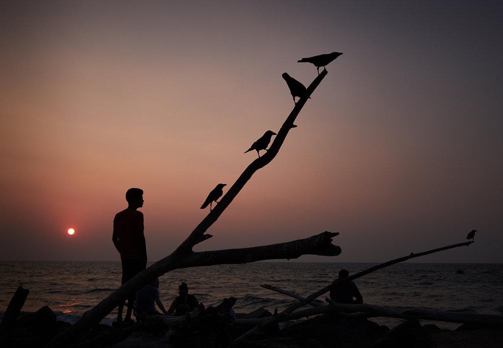 Negombo sunset.jpg
