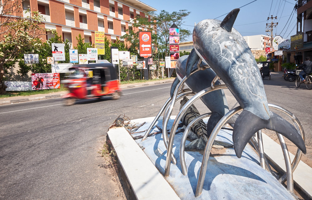 Sealife Negombo.jpg