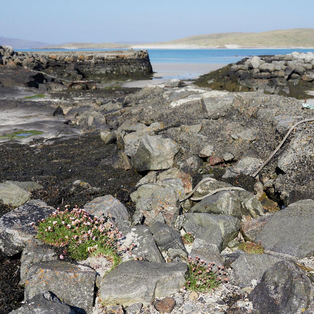 Cidhe Eolaigearraidhl Barra 2.jpg