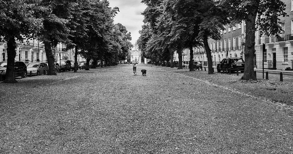 Walking the dog 2.jpg