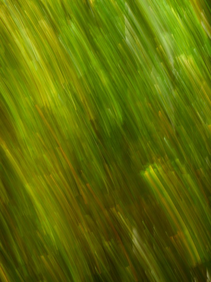 Mont St Hilaire1600x1200 sRGB.jpg