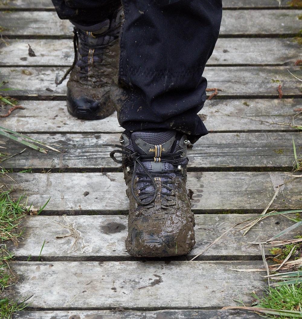 Mud1600x1200 sRGB.jpg