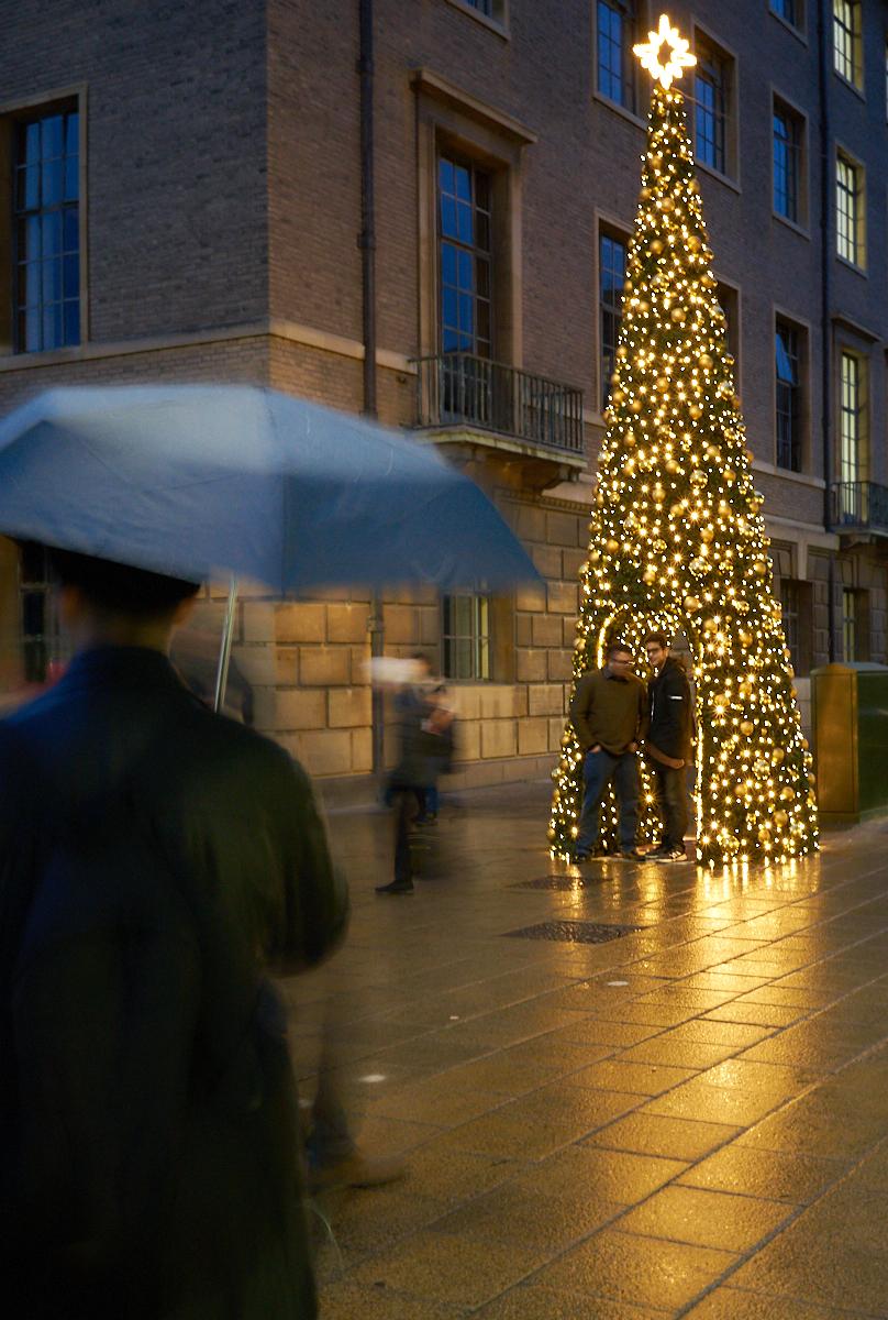 Christmas tree au Magritte?