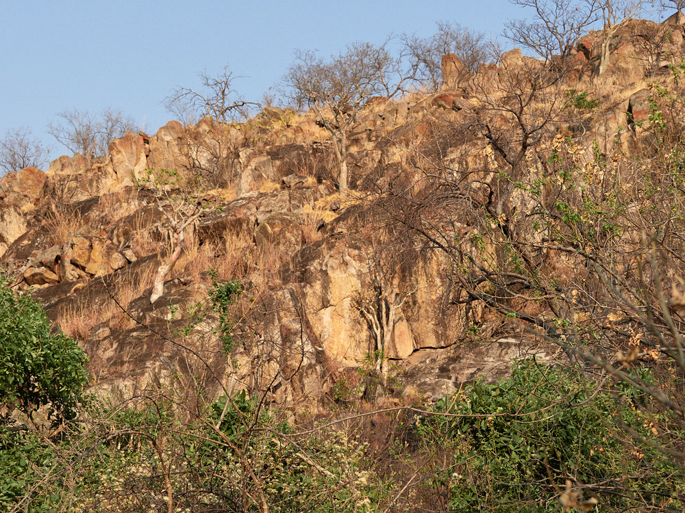 Leopard country with San rock art 1600x1200 sRGB.jpg