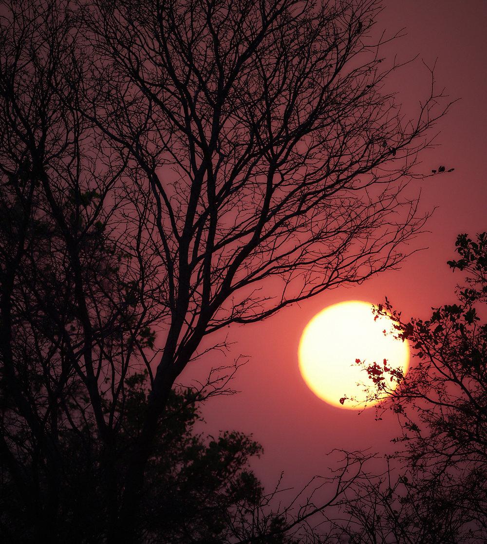Savute sunset 1600x1200 sRGB.jpg