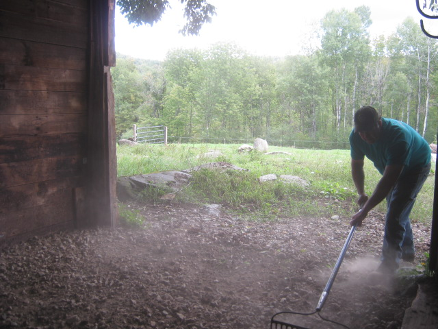 "My husband raking out the crusher run base for the new barn ""floor"" (those old wooden floorboards I cleaned last year weren't worthy of another season)."