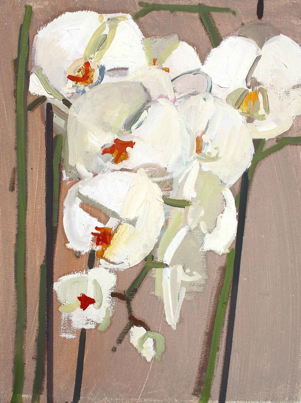 40 x 30 cm White Orchid, Oil on Canvas
