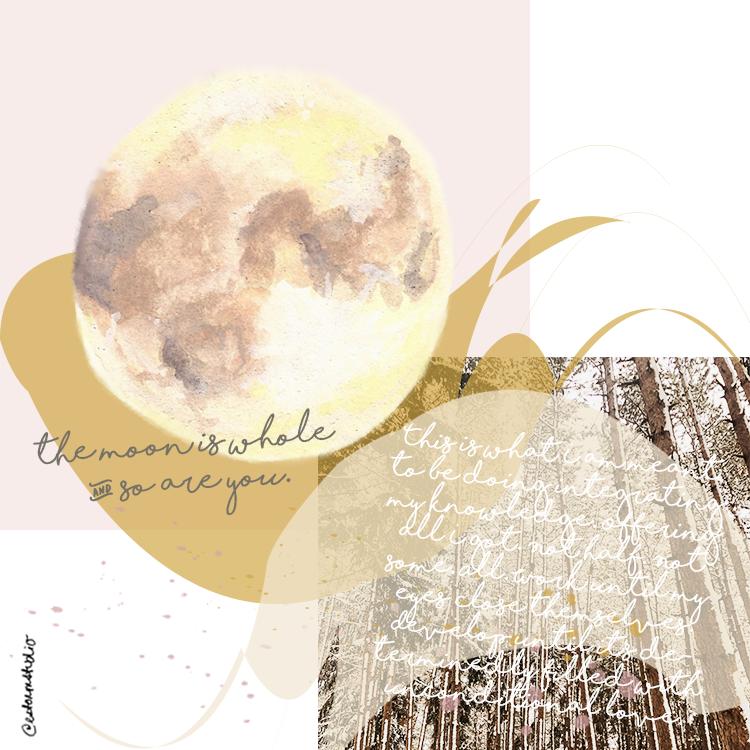 sag_moon_collage-copyright-estormstudio.png