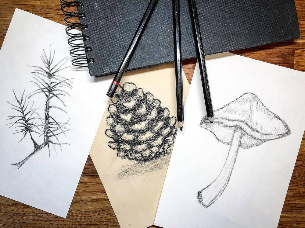 Mina skisser med temat skogen som ska få bli en mönsterrapport.
