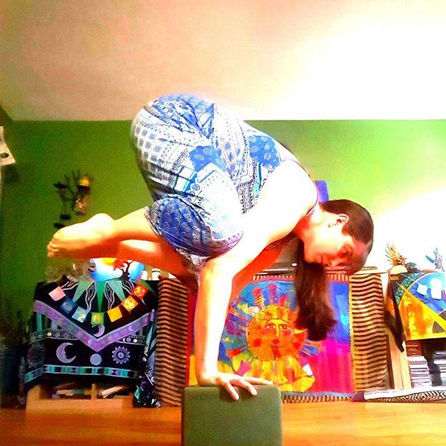 Favorite pose; feels good, it's easy, and it's fun. What more reason does one have to do ANY thing? #iloveyoga #instafit #balance #bakasana #crowpose #strikeapose #strongwomen #strongnotskinny #yogaeveryday #yogaeverydamnday #yogajunkie