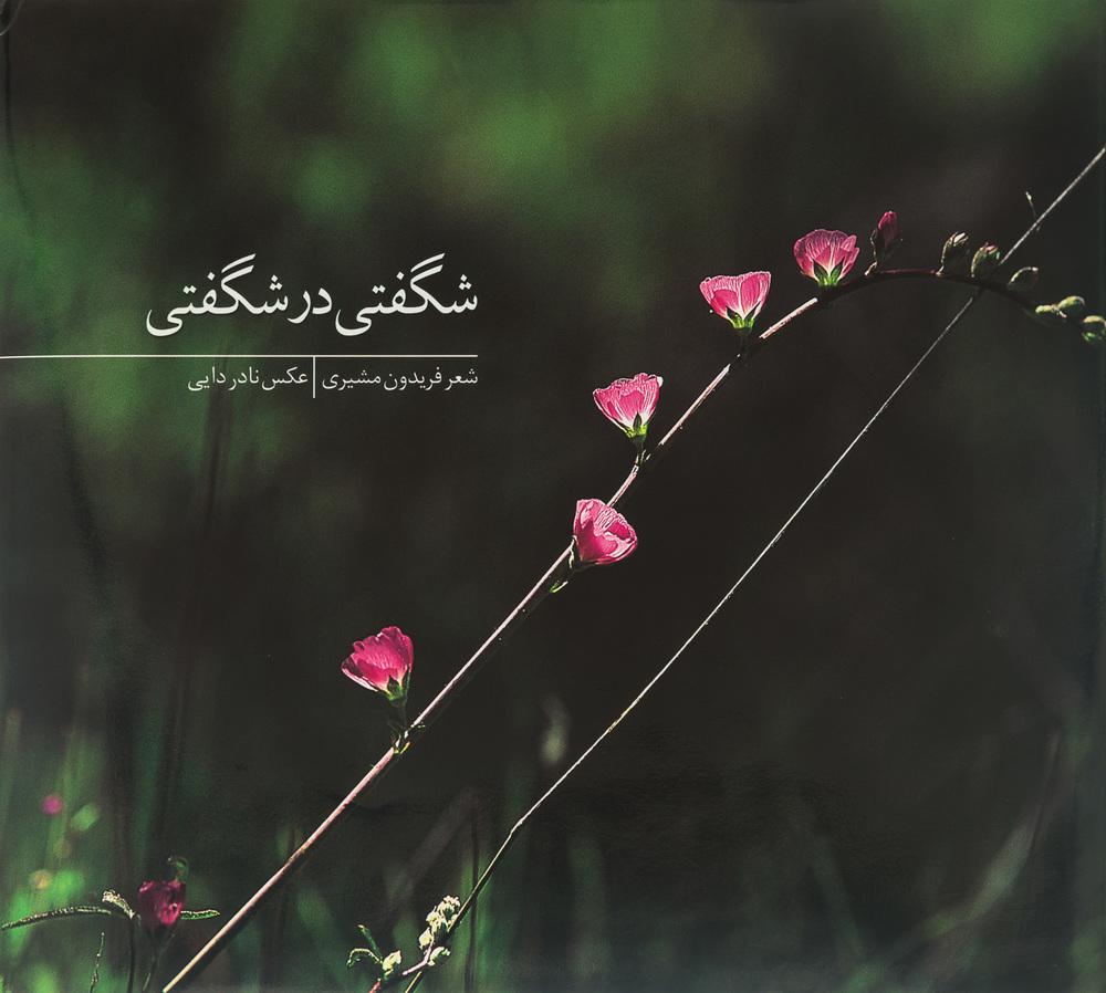 moshiri-poet-daii-photography.jpg