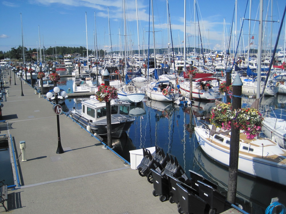 port-sidney-marina.jpg