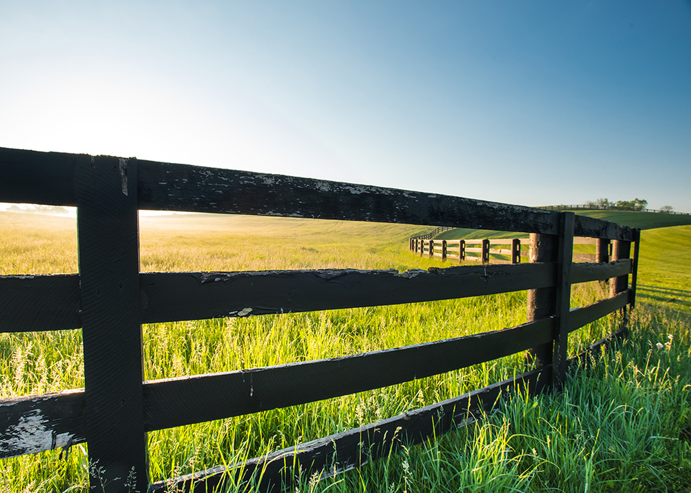 Close Up of Old Horse Fence, Lexington, Kentucky