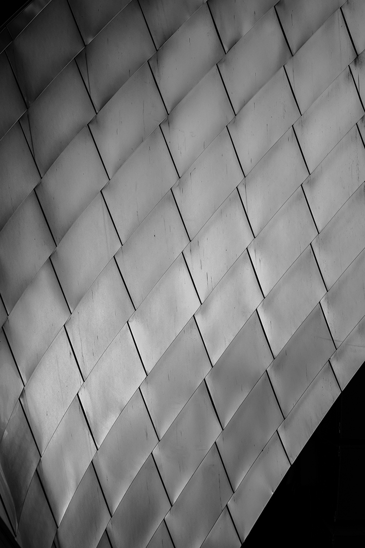 Metal Scales in Black and White, Chicago, Illinois