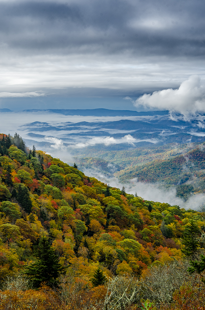 Morning Clouds hanging low over Mountains in Fall, Blue Ridge Parkway