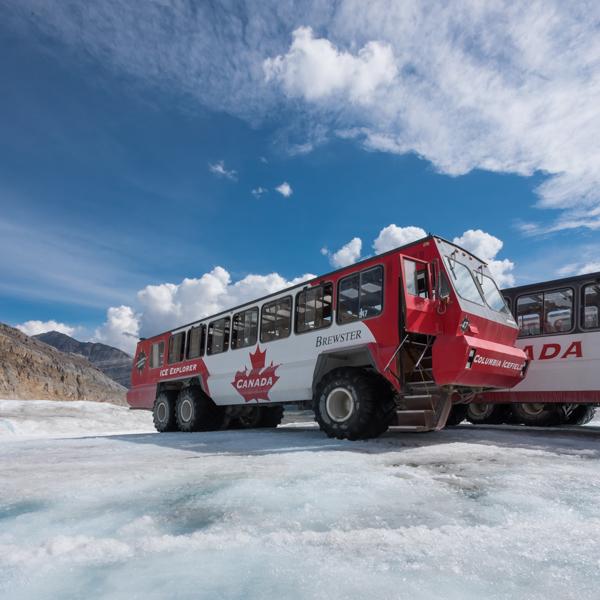 Ice Explorer Bus