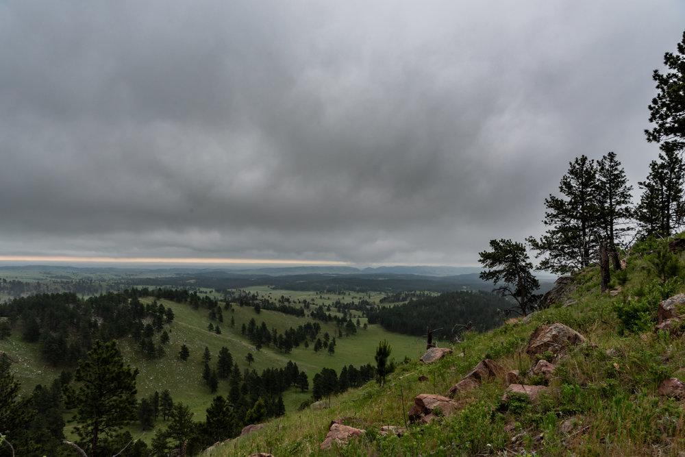 Rolling Fields in Black Hills Wilderness