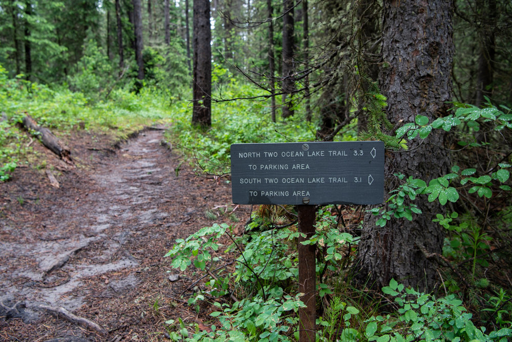 Trail Sign Along Muddy Trail in Tetons