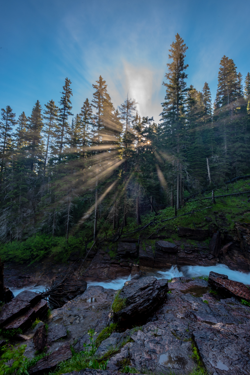 Sun Rays Burst Through Misty Forest