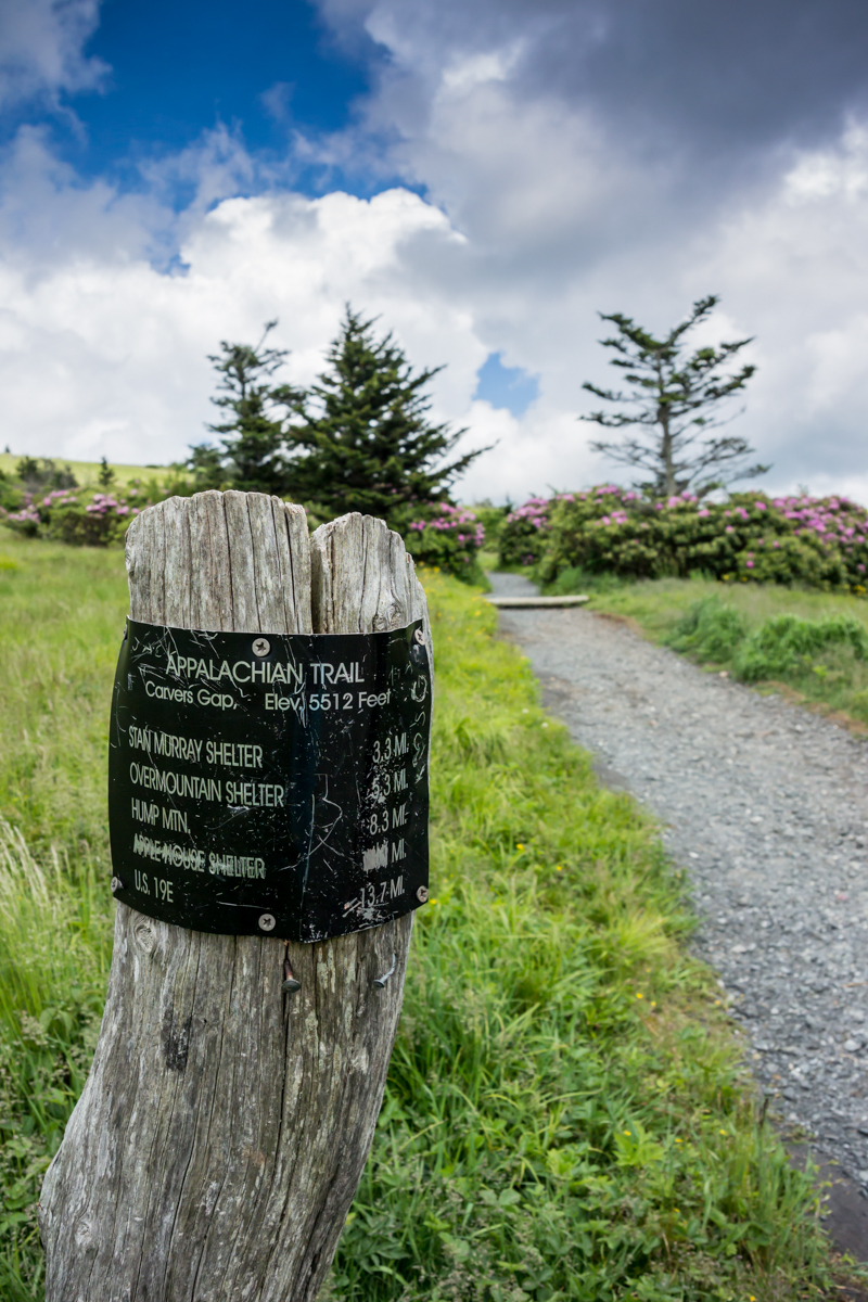 Carvers Gap Sign Post