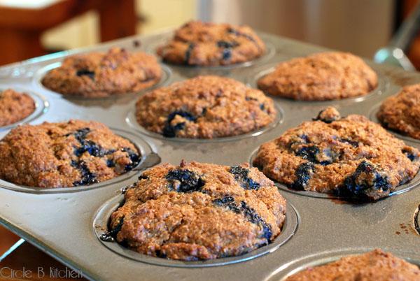 Blueberry Molasses Bran Muffins Circle B Kitchen