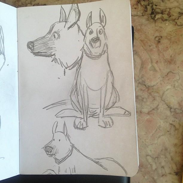 randeepdog