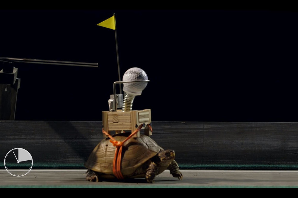 Still frame from World's Slowest Rube Goldberg | Field Day Presents Bob Partington.  Credit: Field Day/YouTube