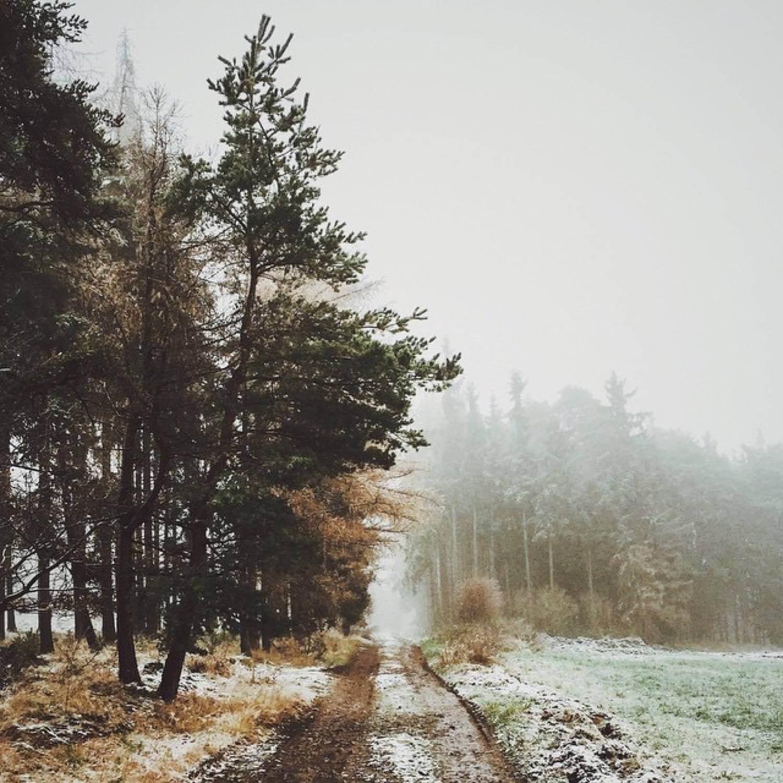 http://instagram.com/hynecheck