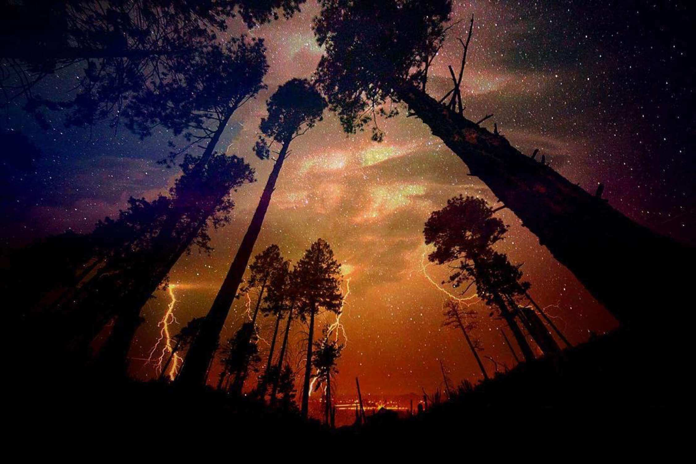 ospreypics - DMAURKG