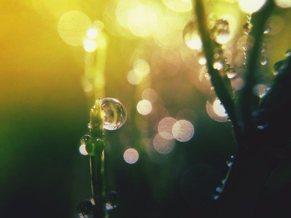 momentsforever1VDLFGHT.jpeg