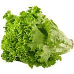 Green Leaf Lettuce, each $0.98