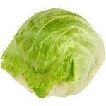 Iceberg Lettuce, each $0.98