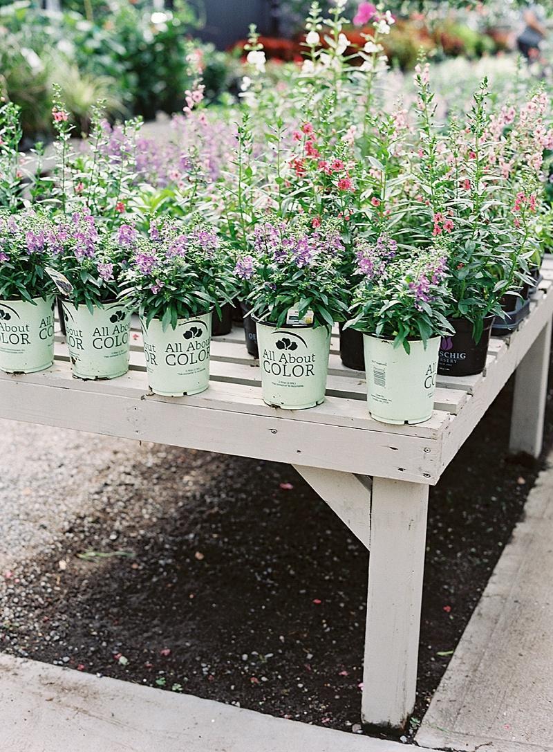 charleston_garden_elopement_16.jpg