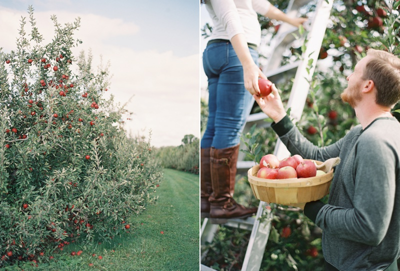 appleorchard_engagement_6.jpg